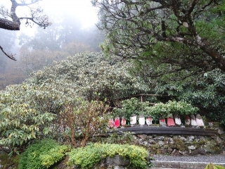 60横峰寺-地蔵26