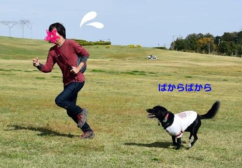 DSC_7822.jpg