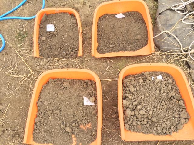土壌検査2016020501