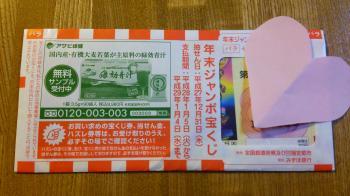 DSC_0982_convert_20151210224211.jpg