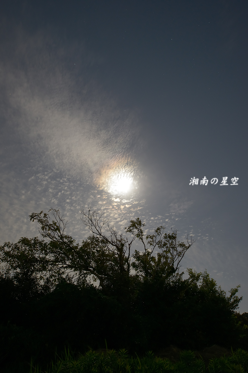 20151026_月夜A