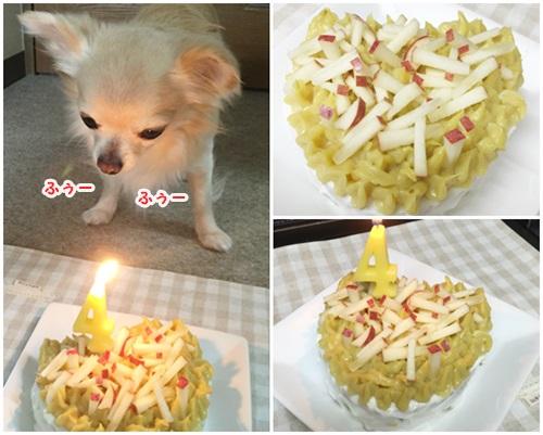 りんちゃんのバースデーケーキ♪