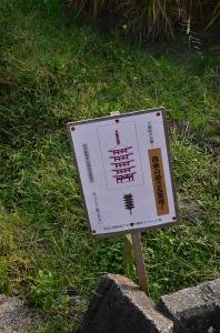 赤米の逆さ五重の塔という案内板