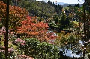 第二庭園の紅葉