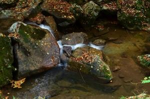常清滝下流の小川の流れ
