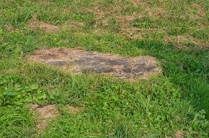 備中国分寺 南門跡の礎石