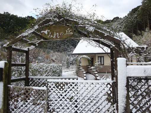 20160120 雪の朝①