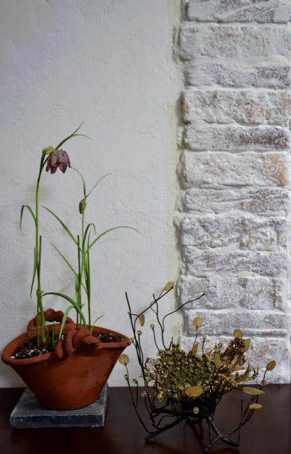 2,1室内園芸