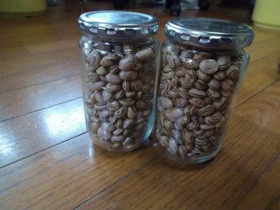 12.12うずら豆