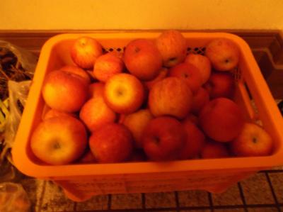 12.14貰い物のリンゴ