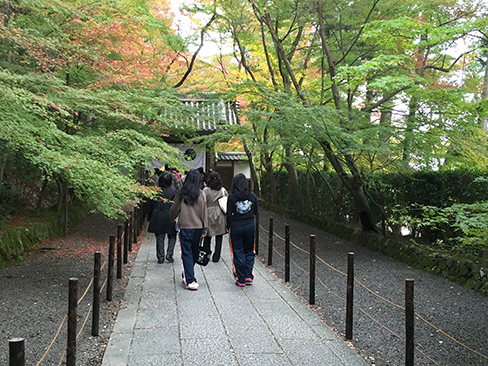 粟生光明寺・薬医門付近_H27.11.23撮影