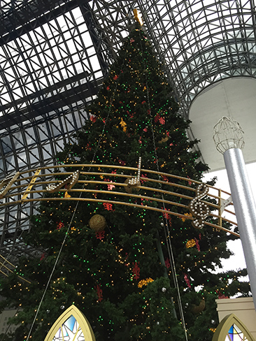 京都駅ビルのクリスマスツリー_H27.11.25撮影