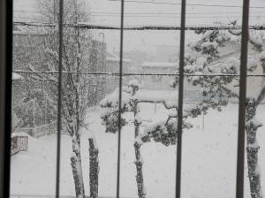 雪もち 003