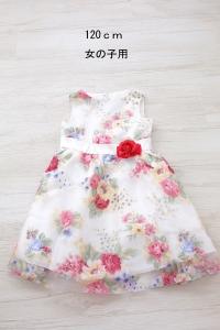 022女ドレス120