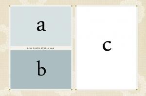 WLD04-abc小