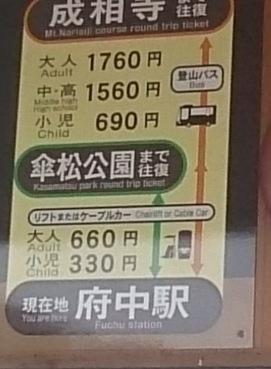 傘松公園04