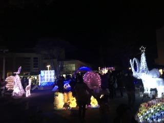 2015-12-12 114