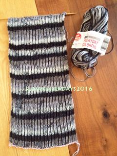 20160129_knit.jpg