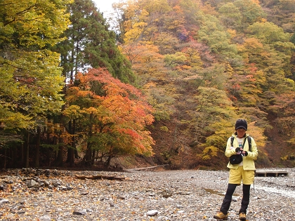 20151103藤原岳06