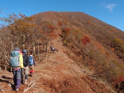 20151103藤原岳17