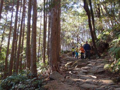 20151205熊野古道13