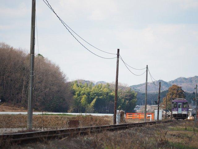 P1104268.jpg