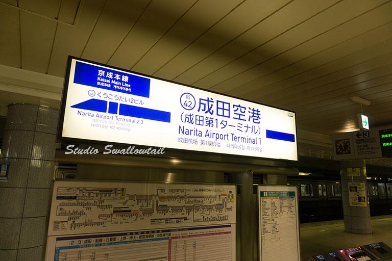 DSC05289.jpg