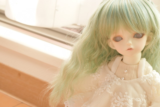 DSC_1184.jpg