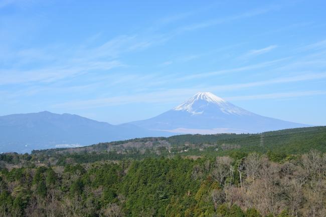 三島スカイウォーク 富士山