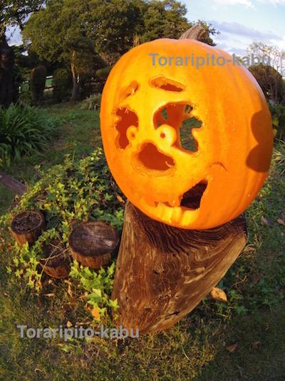 2015年ハロウィーンかぼちゃ