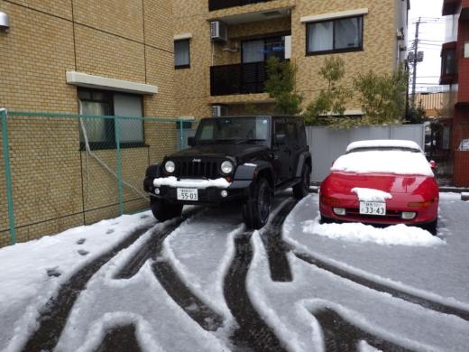 2016年初雪 (1)