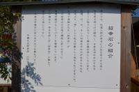 招幸石は台湾から160131