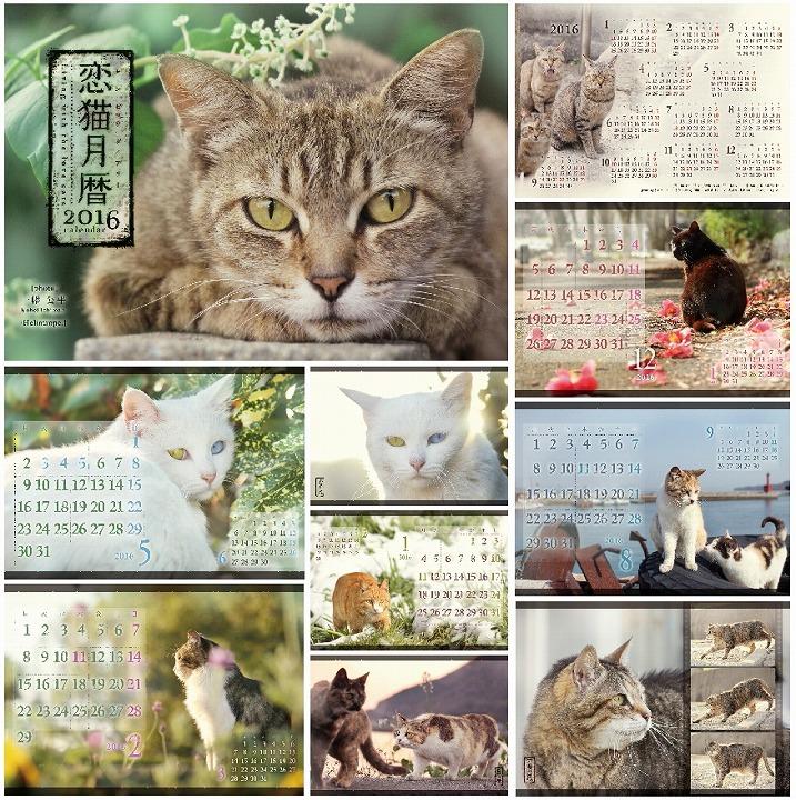 恋猫201602