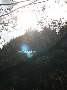 1_20151028192657e51.jpg