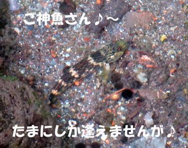 6_201602132126140cd.jpg