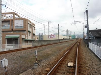 P1110032_R.jpg