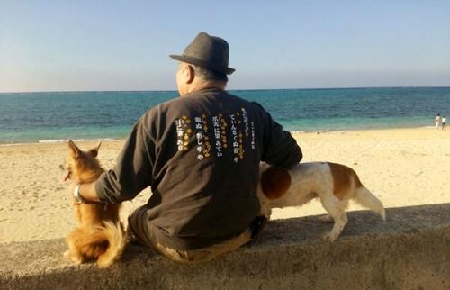 愛犬サンシン、サンゴ