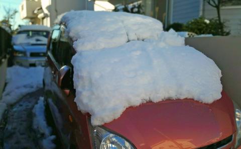埼玉の大雪