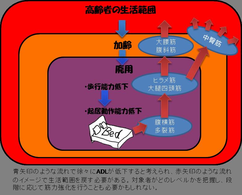 高齢者の筋力低下による生活範囲の縮小化のイメージ図