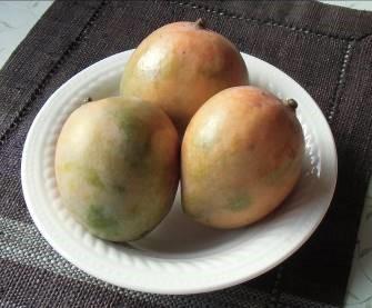 買った激安アップルマンゴー