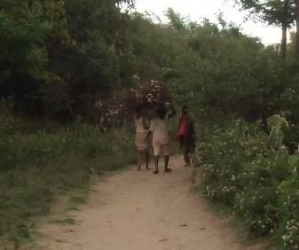 サルバラチ村 娘たちの薪集め風景