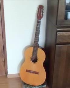 ギター、マダガスカル
