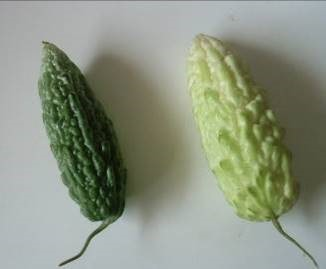 ニガウリ緑と白 マダガスカル産