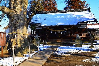 白鳥神社 (1)