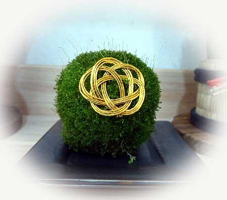 藻玉もお正月