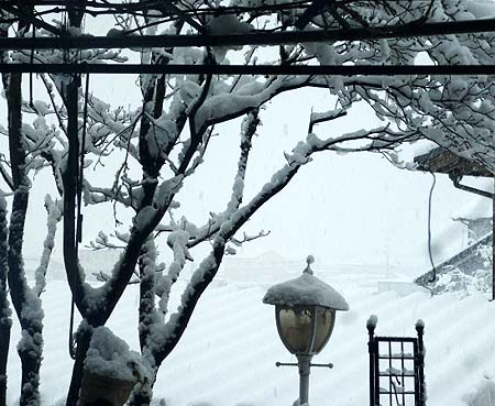 1 18雪1