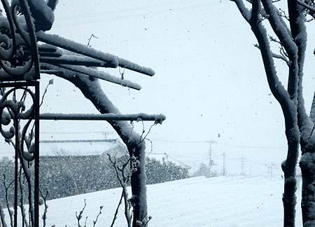 1 20又 雪
