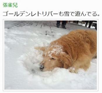 【台湾の反応】台湾で積雪キタ━(゚∀゚)━!!日本の雪予報が大当たりで台湾人が大喜び!台湾人「日本の神気象予報だ!」2