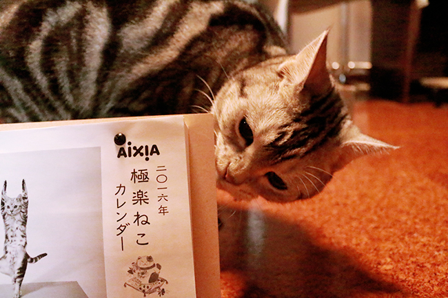 blog_000006872.jpg