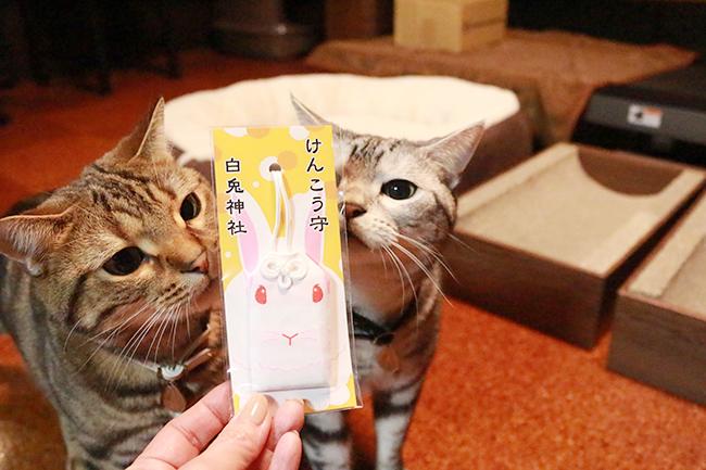 blog_000006998.jpg